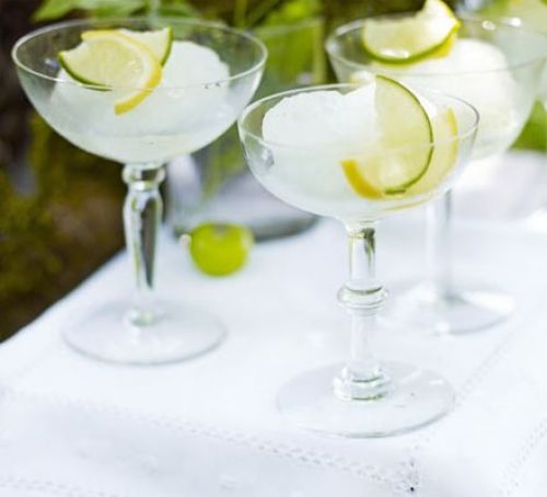 Gin & tonic sorbet Recipe